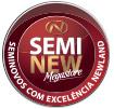 Seminew